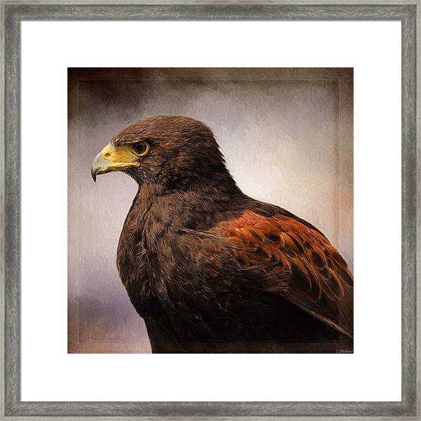 Wildlife Art - Meaningful Framed Print