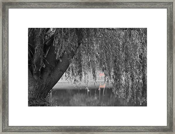 Framed Print featuring the photograph Willow Deer II by Dylan Punke