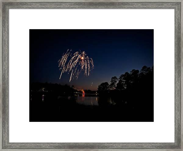 Willow Firework Framed Print