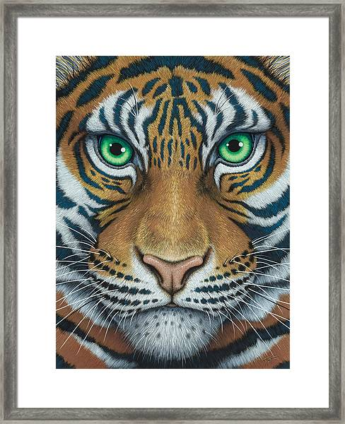 Wils Eyes Tiger Face Framed Print