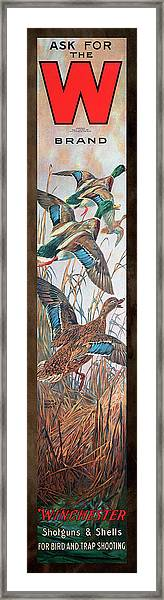Winchester Bird And Trap Ammo Display Framed Print