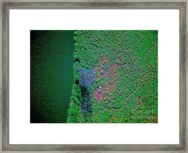Wind Blown Marsh Tree And Water Framed Print