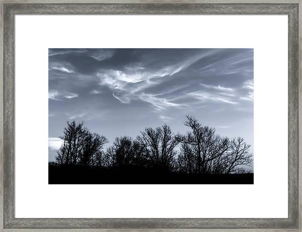 Wind Dancing On Trees Framed Print