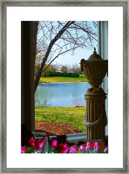 Window View Pond Framed Print