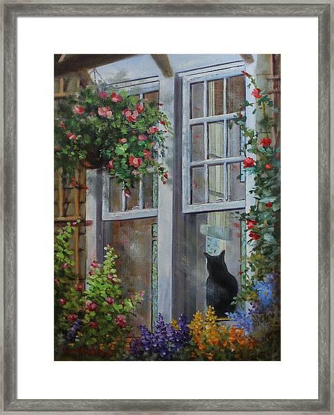 Window Watcher Framed Print