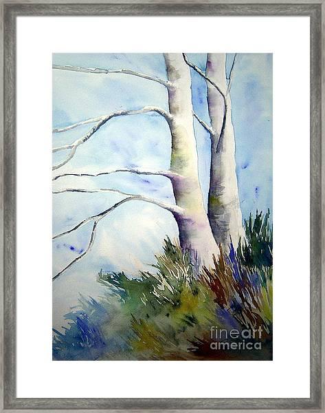 Winds Of Provence Framed Print