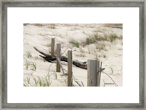 Windswept Beach Fence Cape Cod Massachusetts Framed Print