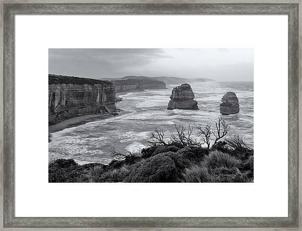 Windswept Framed Print