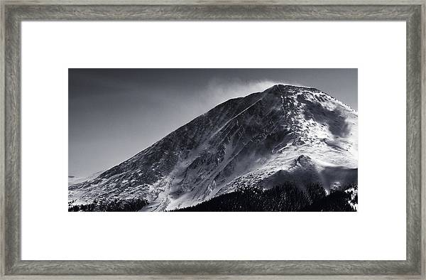 Windswept Framed Print