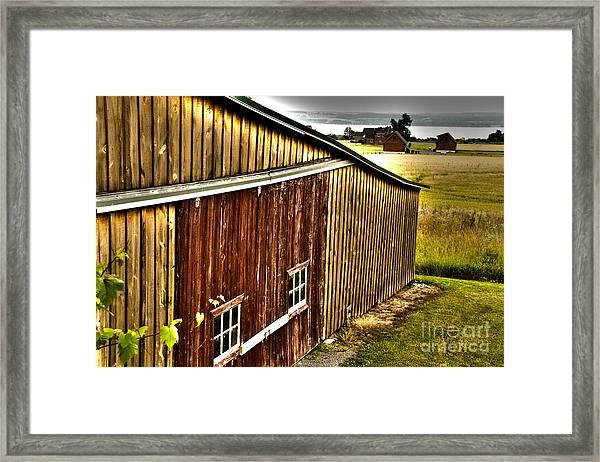 Wine Barn Framed Print
