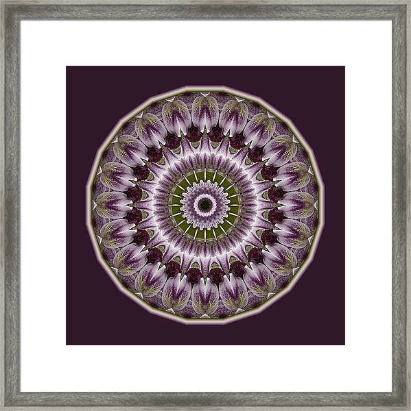 Wine Roses And Thorns Framed Print