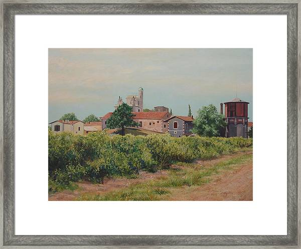 Winery In Provence Framed Print