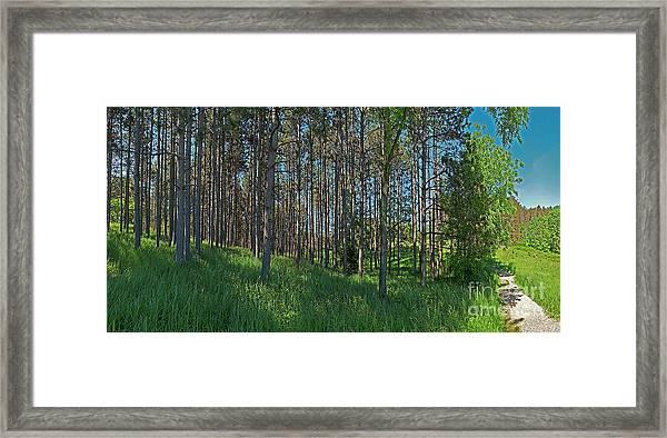 Wingate Prairie Veteran Acres Park Pines Crystal Lake Il Framed Print