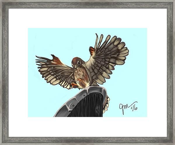 Wings. II Framed Print