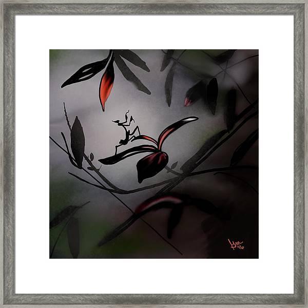 Wings Iv Framed Print