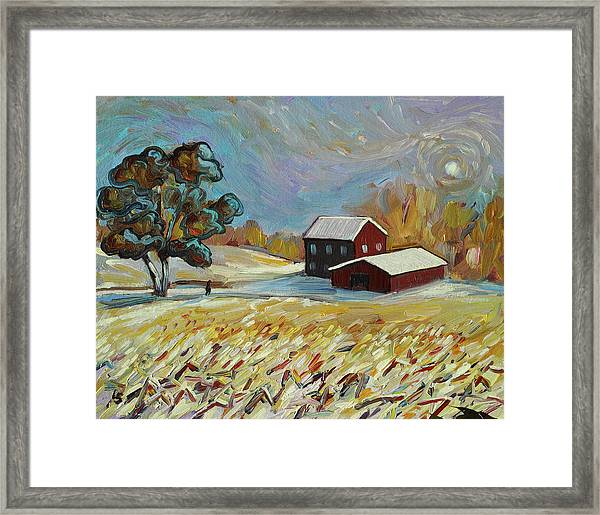 Winter Corn Framed Print