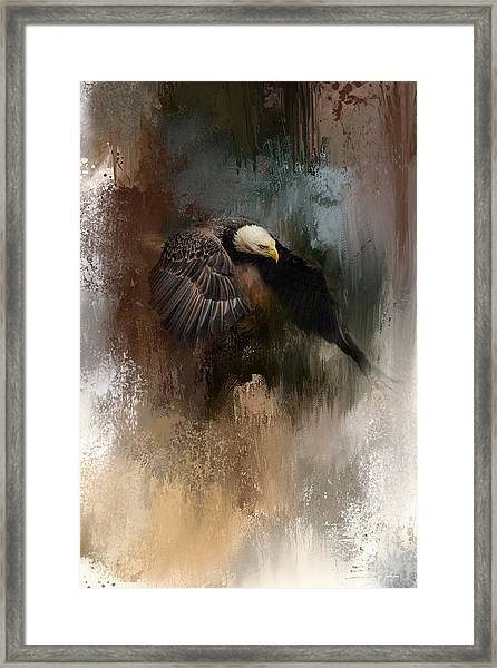 Winter Eagle 2 Framed Print