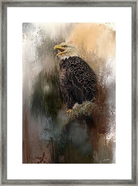 Winter Eagle 3 Framed Print