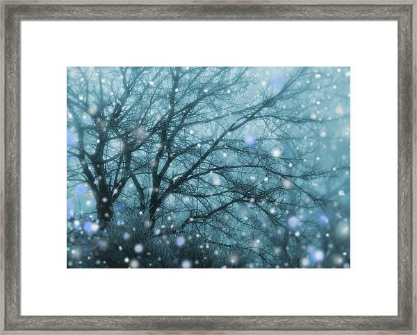 Winter Evening Snowfall Framed Print