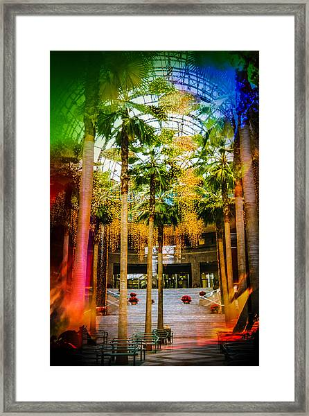 Winter Garden In The Old Wtc Framed Print