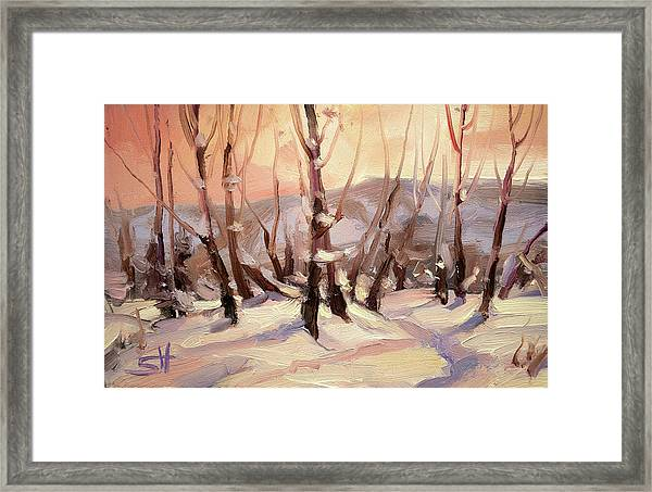 Winter Grove Framed Print