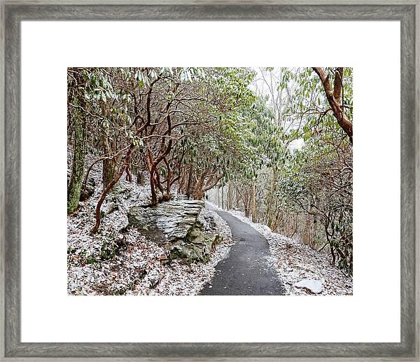 Winter Hiking Trail Framed Print