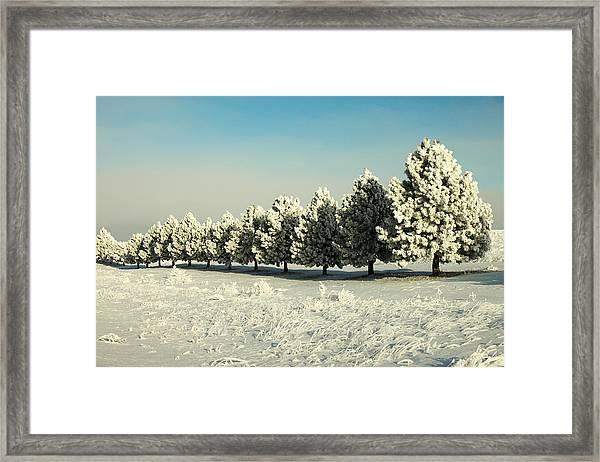 Winter In Montana Framed Print