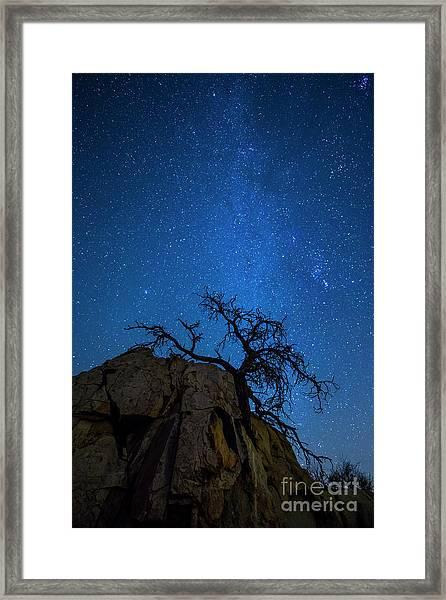 Winter In The Desert Framed Print