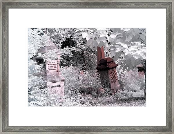 Winter Infrared Cemetery Framed Print