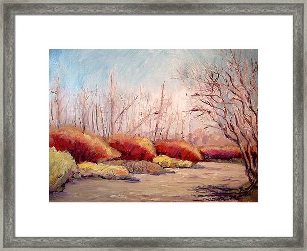 Winter Landscape Dry Creek Bed Framed Print