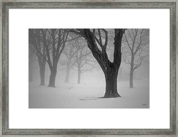 Winter Landscape V Framed Print