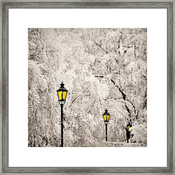 Winter Lanterns Framed Print