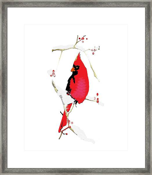 Framed Print featuring the mixed media Winter Messenger by Larry Talley