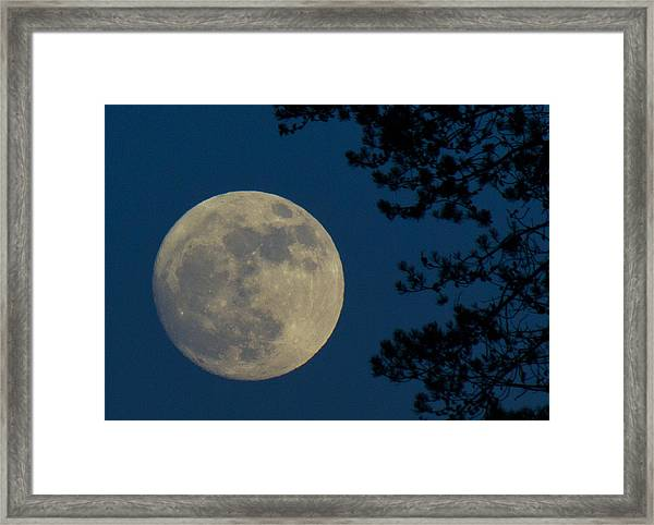 Framed Print featuring the photograph Winter Moon by Randy Hall