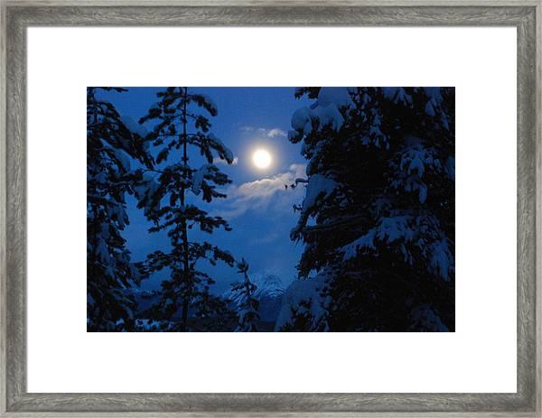 Winter Moonlight Framed Print