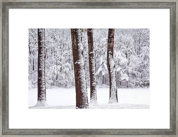 Framed Print featuring the photograph Winter On Paradise Pond by Susan Cole Kelly