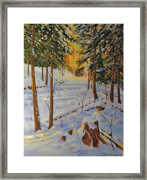 Winter On The Lane Framed Print