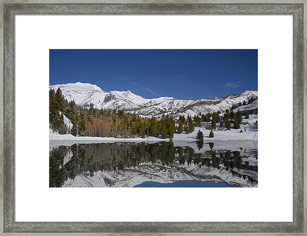 Winter Refelctions Framed Print