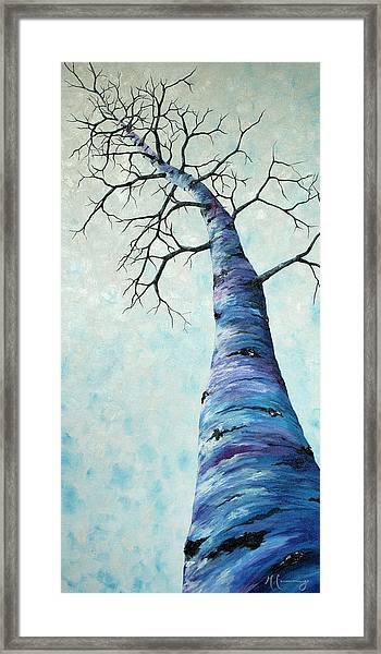 Winter Sky Framed Print