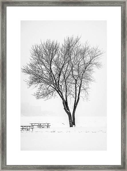 Winter Solitude Framed Print