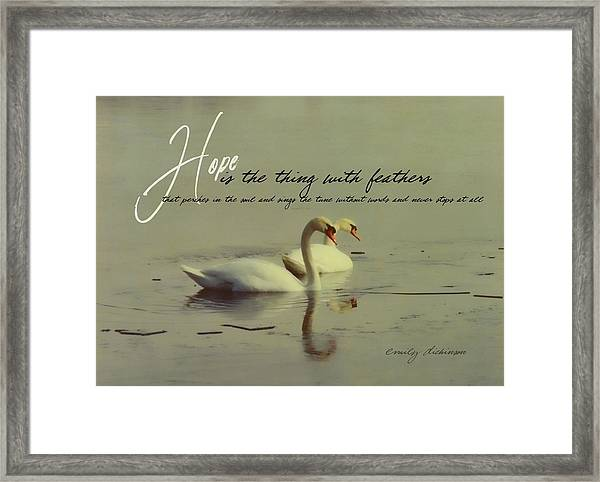 Winter Swans Quote Framed Print