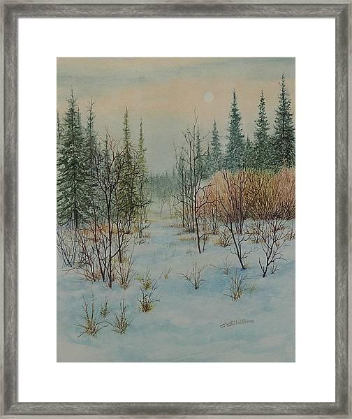 Winter Trail Alberta Framed Print