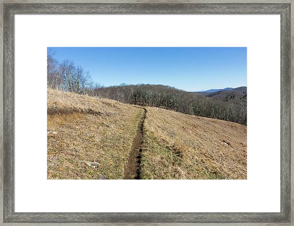 Framed Print featuring the photograph Winter Trail - December 7, 2016 by D K Wall