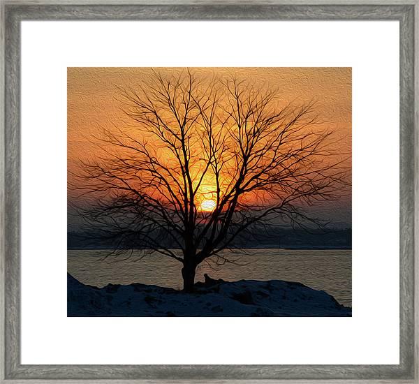 Winter Tree Sunrise Framed Print