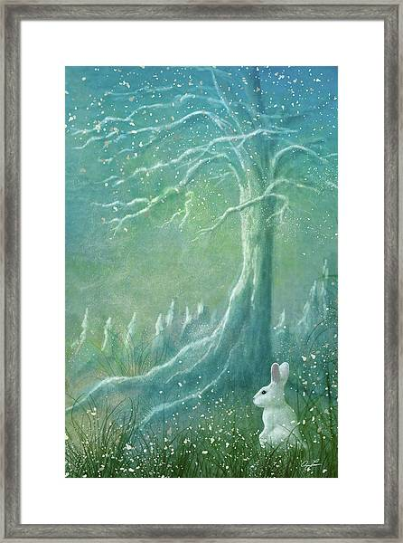 Winters Coming Framed Print