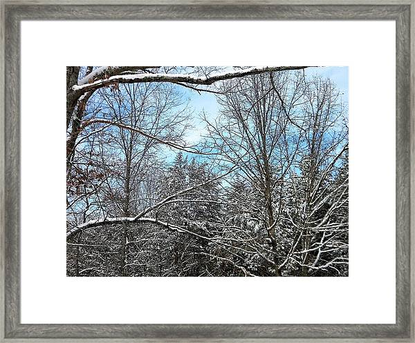 Winter's First Snow Framed Print