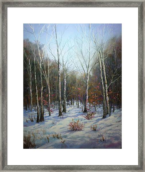 Winterscape Framed Print by Paula Ann Ford