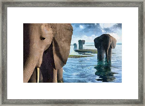 Wisdom Painted Framed Print