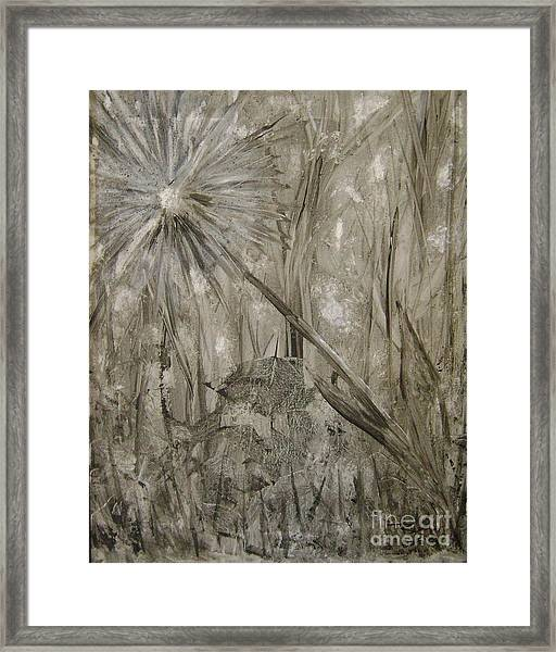 Wish From The Forrest Floor Framed Print