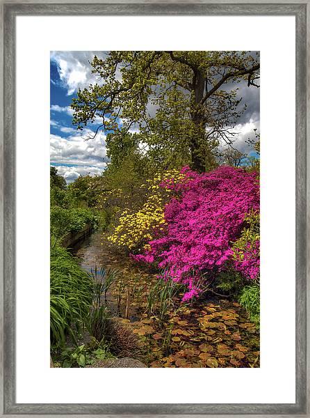 Wisley Garden Framed Print